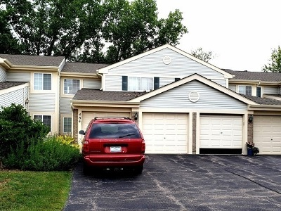 Palatine Condo/Townhouse Price Change: 484 East Fawn Lane