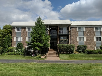Arlington Heights Condo/Townhouse New: 1503 North Windsor Drive #303