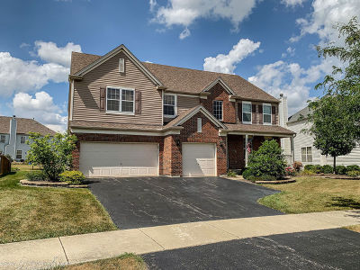 Lockport Single Family Home For Sale: 17820 Wilker Drive