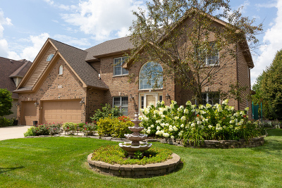 Naperville Single Family Home New: 3223 Tall Grass Drive
