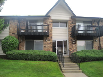 Willowbrook Condo/Townhouse New: 11a Kingery Quarter Street #204