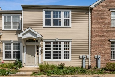 Oswego Condo/Townhouse For Sale: 131 Springbrook Trail South