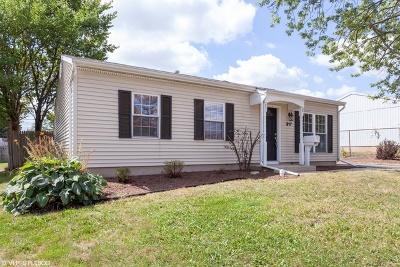 Romeoville Single Family Home New: 317 Healy Avenue