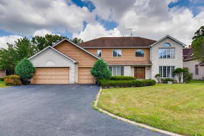 Bensenville Single Family Home For Sale: 17w210 Massel Court