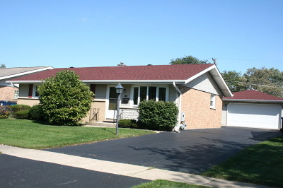 Cook County Single Family Home New: 9219 Willow Lane