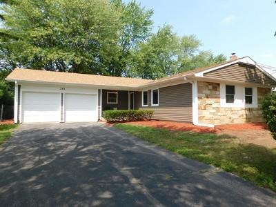 Buffalo Grove Single Family Home For Sale: 381 Arborgate Lane
