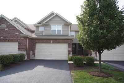 Tinley Park Condo/Townhouse New: 17914 Iroquois Trace