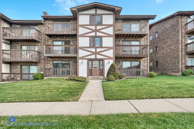Alsip Condo/Townhouse New: 3660 West 119th Street #302