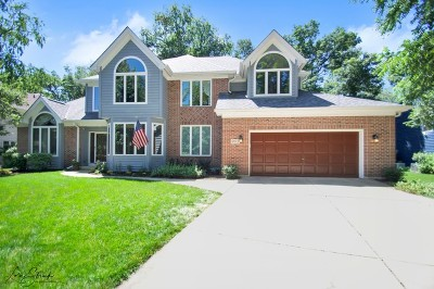 West Chicago Single Family Home For Sale: 905 Ridgewood Court