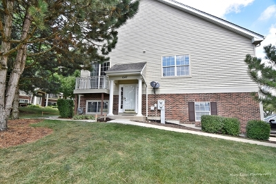 St. Charles Condo/Townhouse For Sale: 647 Pheasant Trail