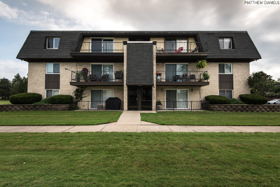 Palos Heights, Palos Hills Condo/Townhouse For Sale: 11135 South 84th Avenue #3A