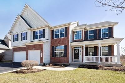 Lake Villa Single Family Home For Sale: 515 Blazing Star Drive