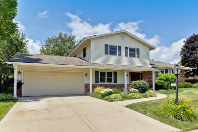 Hoffman Estates Single Family Home For Sale: 3790 Winston Drive