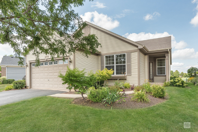 Crest Hill Single Family Home For Sale: 16109 Seneca Lake Circle