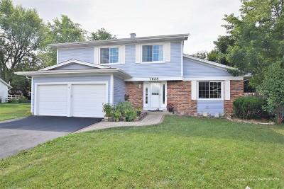 Aurora Single Family Home New: 1625 Brook Court
