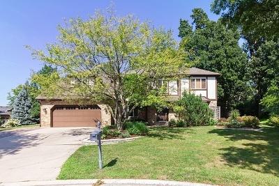 Burr Ridge IL Single Family Home New: $649,000