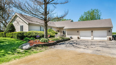 Kane County Single Family Home New: 3n282 Il Route 47 Highway