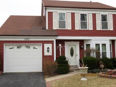 Mundelein Condo/Townhouse For Sale: 1287 Huntington Drive