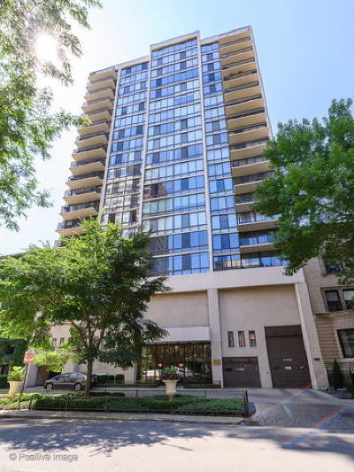 Condo/Townhouse New: 1516 North State Parkway #8D