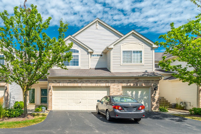 South Elgin Condo/Townhouse New: 289 Nicole Drive #C