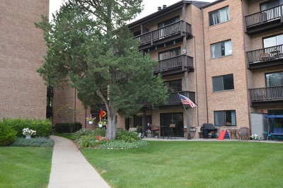Condo/Townhouse For Sale: 460 North Main Street #N203A