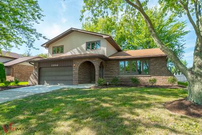 Homer Glen Single Family Home For Sale: 13012 Meadowview Lane