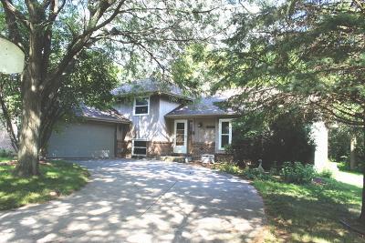 Naperville Single Family Home New: 11s079 Sheri Street