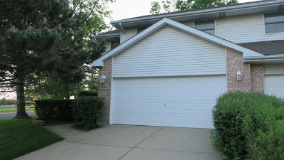 Downers Grove Condo/Townhouse New: 1046 Pinewood Drive