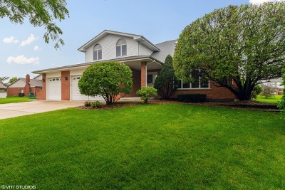Tinley Park Single Family Home New: 17706 Clifton Court