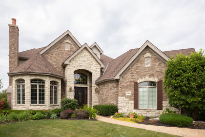 Frankfort Single Family Home New: 22458 Cobble Stone Trail