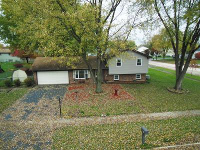Hanover Park Single Family Home For Sale: 2238 Waterfall Lane