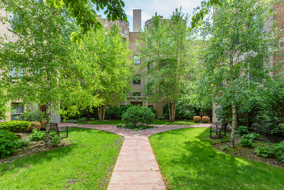 Condo/Townhouse New: 4731 North Paulina Street #2