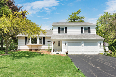 Naperville Single Family Home New: 28w766 Davidson Road