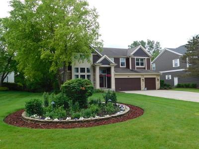 Buffalo Grove Single Family Home New: 318 Checker Drive
