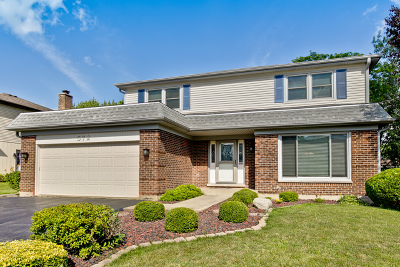 Lake Zurich Single Family Home For Sale: 572 Cortland Drive
