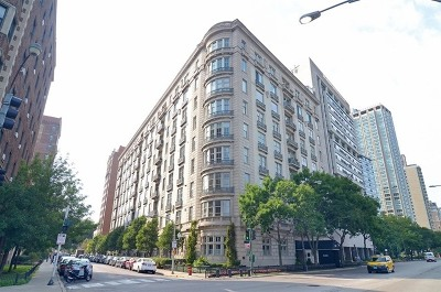 Condo/Townhouse New: 3400 North Lake Shore Drive #1D