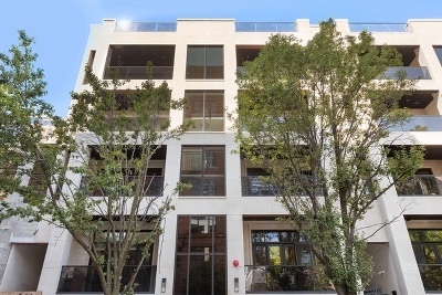 Condo/Townhouse New: 226 South Green Street #4N