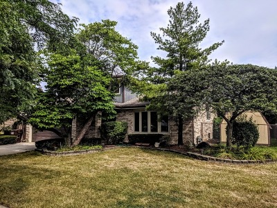 Tinley Park Single Family Home New: 8300 164th Court