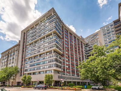 Condo/Townhouse New: 3410 North Lake Shore Drive #17H