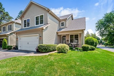 Libertyville Single Family Home For Sale: 202 Harding Avenue