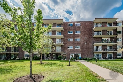 Downers Grove Condo/Townhouse New: 5300 South Walnut Avenue #1B