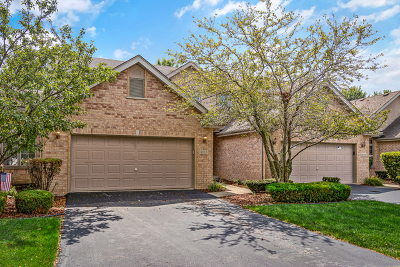 Tinley Park Condo/Townhouse New: 8113 Nielsen Drive