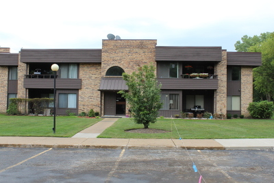 Palatine Condo/Townhouse New: 1414 North Sterling Avenue #201