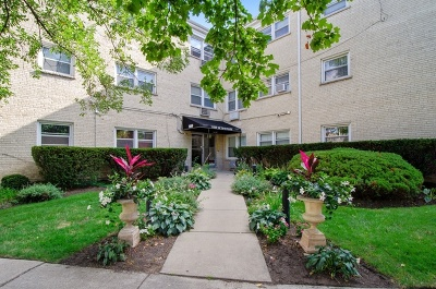Condo/Townhouse New: 1440 West Sherwin Avenue #104