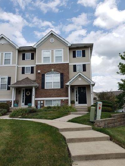 Oswego Condo/Townhouse New: 112 Lakeshore Drive