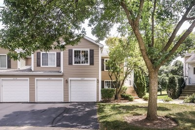 Schaumburg Condo/Townhouse For Sale: 2105 Southwind Circle #2105