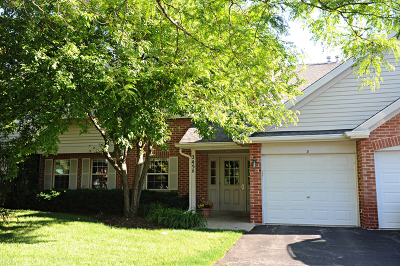 Schaumburg Condo/Townhouse New: 2458 Charleston Drive #5