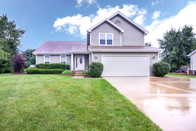 Lake Zurich Single Family Home New: 285 Thistle Lane