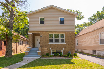 Chicago IL Single Family Home New: $399,500