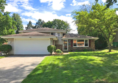Orland Park Single Family Home New: 9035 West 147th Street